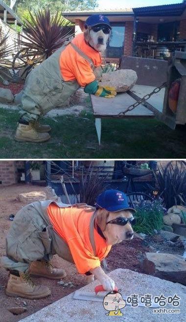 新来的水泥工