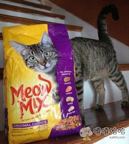 哈哈,第一眼并没有看出来这个猫粮有什么不对!