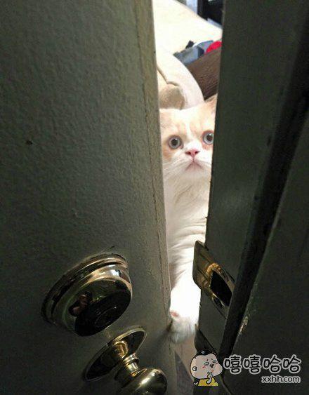 你去哪?谁准你走了?憋走!