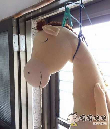 喂,妖妖灵吗,这里有匹马上吊自杀了