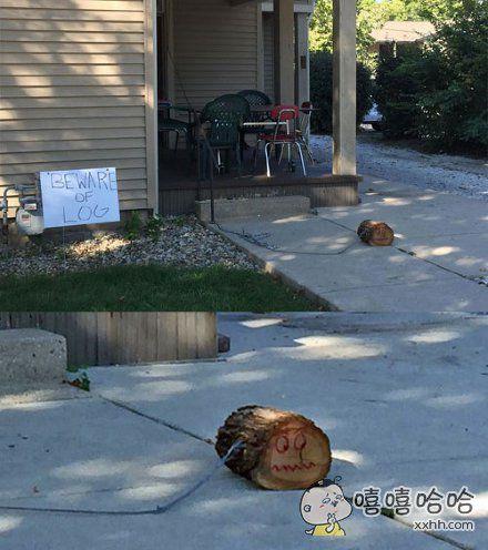 邻居家看门的。。。。