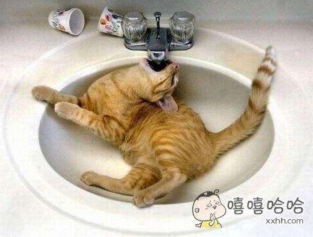 太渴了,谁给开一下呀