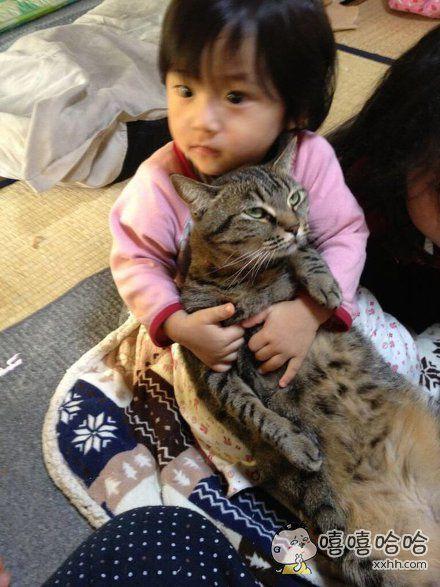 岛国一位爸比表示,4岁的小女儿特别喜欢家里的猫咪,常紧紧抱在怀里不放,猫咪几次抵抗失败后就认命了……一脸生无可恋地放空