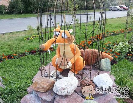 宝宝,粑粑逮了一只狐狸,我给你罩起来了