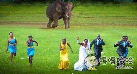 非洲盆友结婚历险记