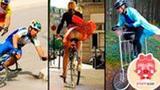 你的智力还要啥自行车