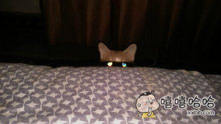 朕来看看这奴才关了灯躺着都在干什么
