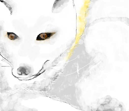 q版白狐头像大全