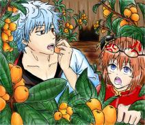 夏天吃西瓜什么的弱爆了!夏天就是应该吃枇杷才对嘛~!