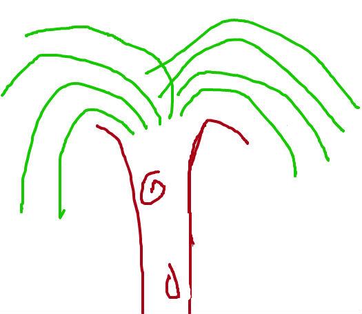 柳树边框矢量图