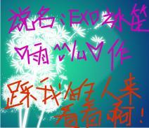 小说小说xoxo