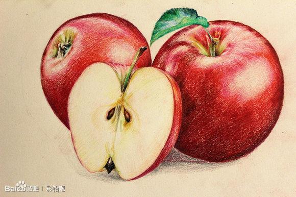 水果彩铅画步骤图片