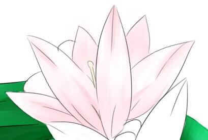 白底手绘可爱小花花
