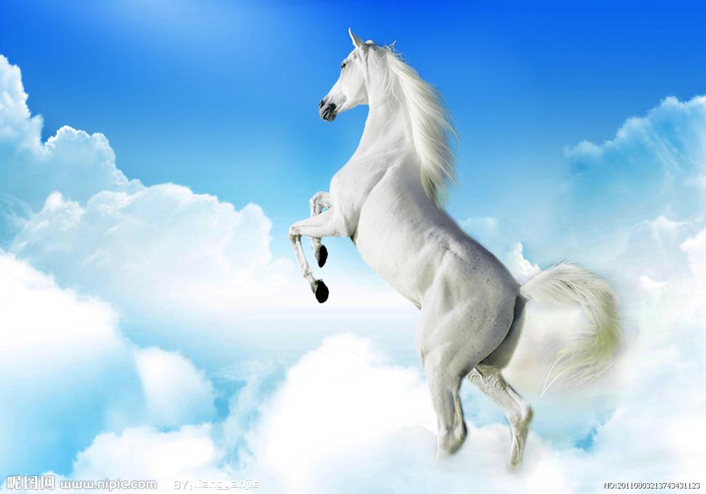 aiduImg骏马奔腾-奔跑的棕色俊马设计图片