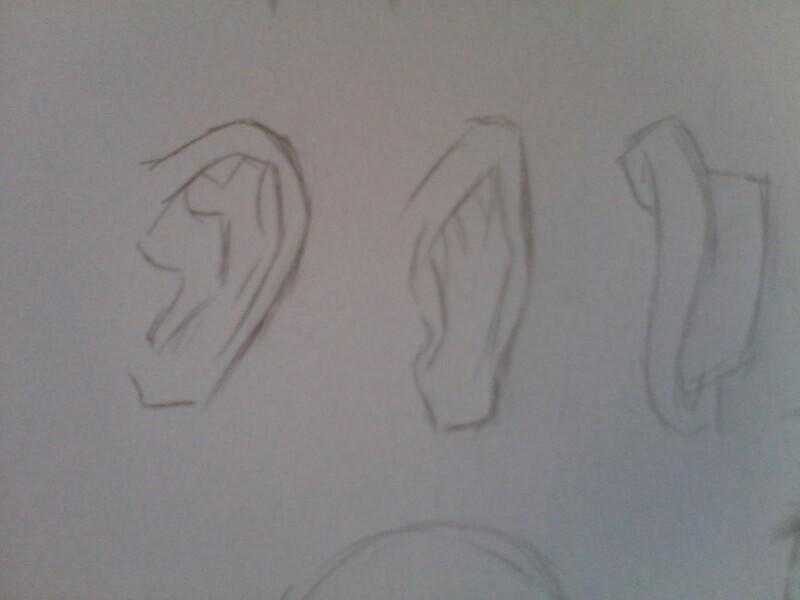 素描耳朵的步骤