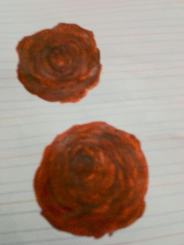 记号笔画玫瑰花