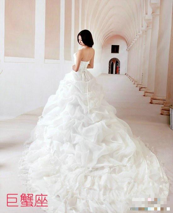 十二星座的婚纱 项链 戒指和高跟鞋
