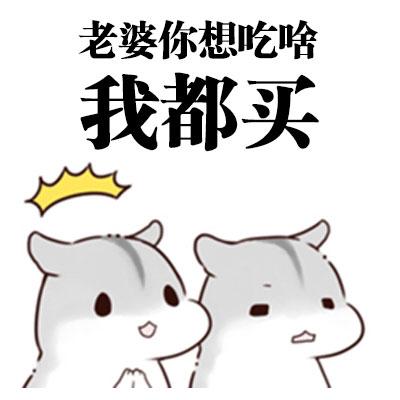 仓鼠表白表情包